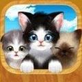 猫咪之城游戏 v1.0.1