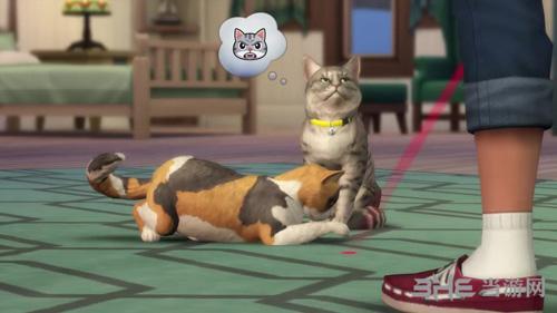 模拟人生4新DLC猫狗4