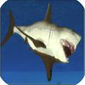 愤怒的鲨鱼3D(Shark Simulator 3D)安卓版V1.3