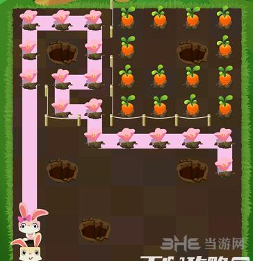 兔子復仇記五針松19關圖片3