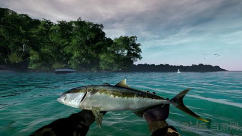 终极钓鱼模拟器截图7