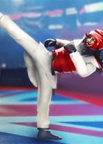 跆拳道大���(Taekwondo Grand Prix)破解版v1.9.1