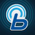 bluelink安卓版V2.31