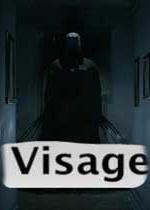 面容(Visage)PC中文版