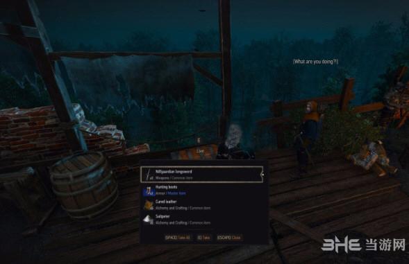 巫师3狂猎偷东西MOD截图0