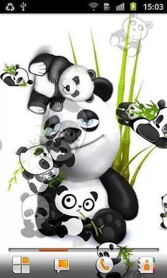 熊猫动态壁纸软件 安卓版v1.