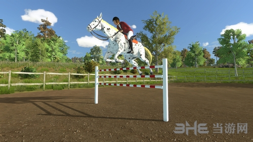 我的小小骑马冠军截图1