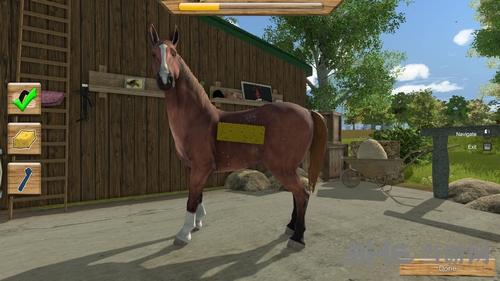 我的小小骑马冠军截图4