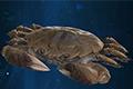 古剑奇谭3河蟹图鉴