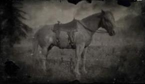 萨福克矮马