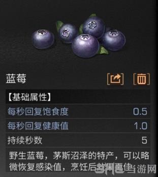 明日之后蓝莓图片