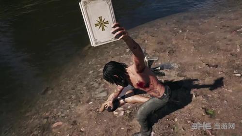 孤岛惊魂5游戏图片2