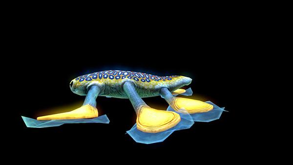 深海迷航吸盘鱼