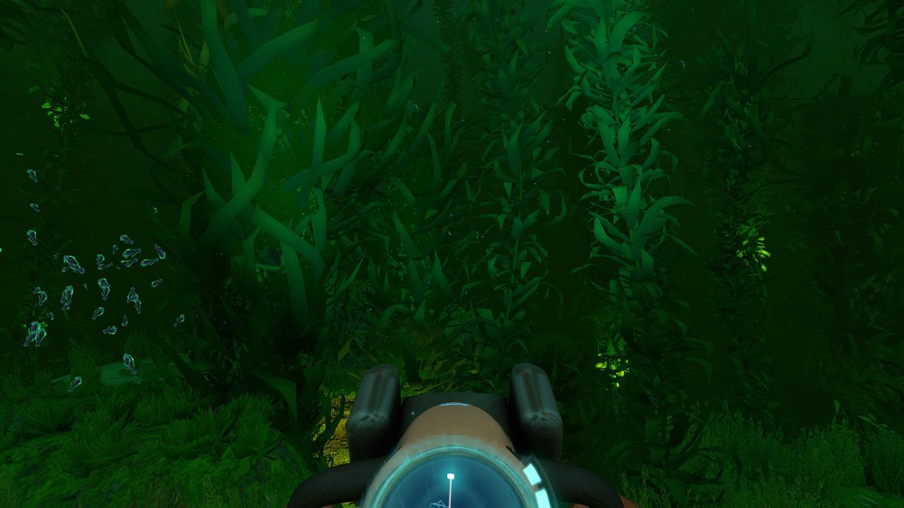 深海迷航海藻森林在哪 美丽水世界海藻区海底世界地图