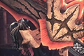 泥鱼龙剑斧III