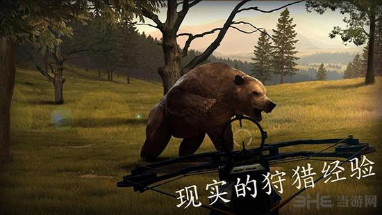 十字弓狩猎:野生动物
