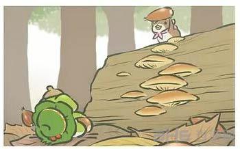 旅行青蛙稀有明信片图片10