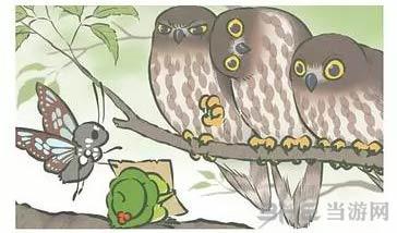 旅行青蛙稀有明信片图片9