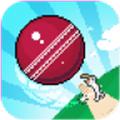 ��大的棒球安卓版V1.0.1