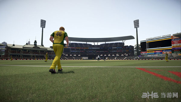 唐纳德布莱德曼板球17截图4