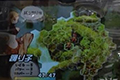 被取消的JRPG王者 最终幻想战略版2首曝截图