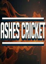 灰�a杯板球�(Ashes Cricket)破解版