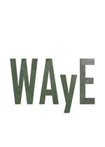 WAyE破解版