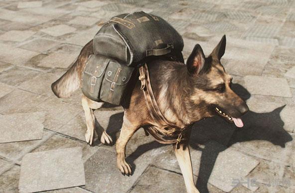 辐射4狗肉背包截图0