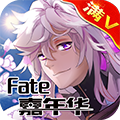 fate嘉年�A�MV版BT安卓版V1.1