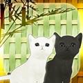 逃脱游戏小猫和七夕手游 V1.0