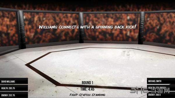 MMA模拟器截图2