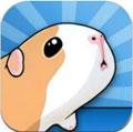 仓鼠桥安卓版V1.5.8