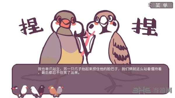 咕啾!文鸟恋爱物语截图3