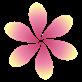 Petal(豆瓣FM客户端) 官方版v2.17.0