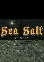 海盐(Sea Salt)PC中文破解版