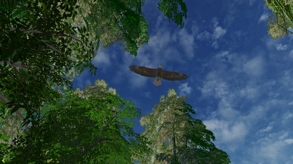 野生动物园:威帕图豹截图4