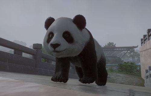 动物园之星游戏截图