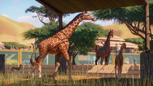 动物园之星电子娱乐下载app送彩金截图
