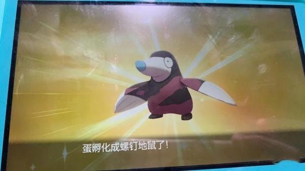 宝可梦剑盾游戏图片4