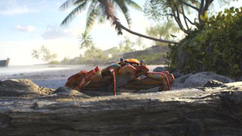 《战地5》威克岛预告视频截图1