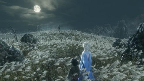 只狼:影逝二度冰雪奇缘艾莎女王征战苇名城MOD截图1