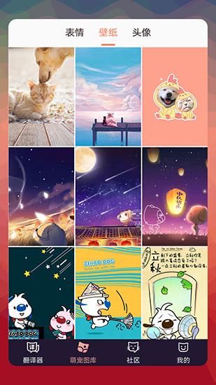 猫语翻译器图片