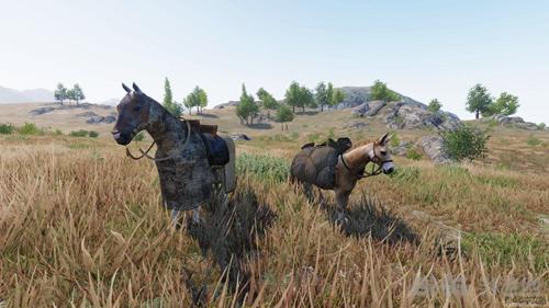 骑马与砍杀2马匹和骡子