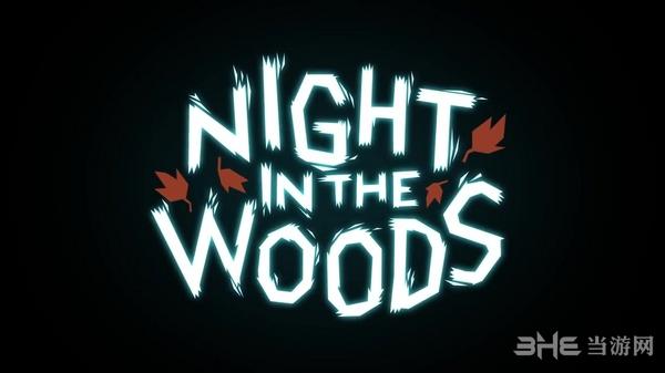 林中之夜封面