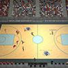 职业篮球经理2019小图
