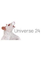 宇宙24(Universe 24)PC?#25165;?#29256;