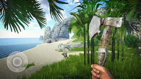 最后的海盗:岛屿生存中文版截图0