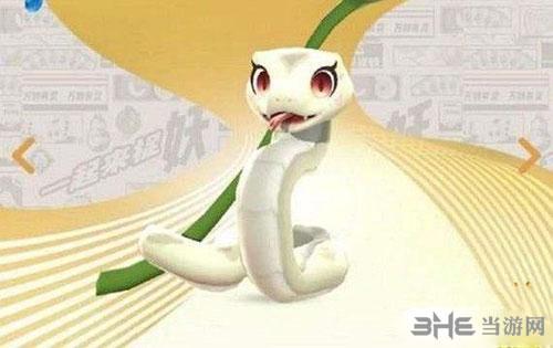 白蛇照片大全图片