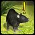 家鼠模拟器中文版