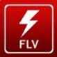 FLVDownloader(网页视频下载)